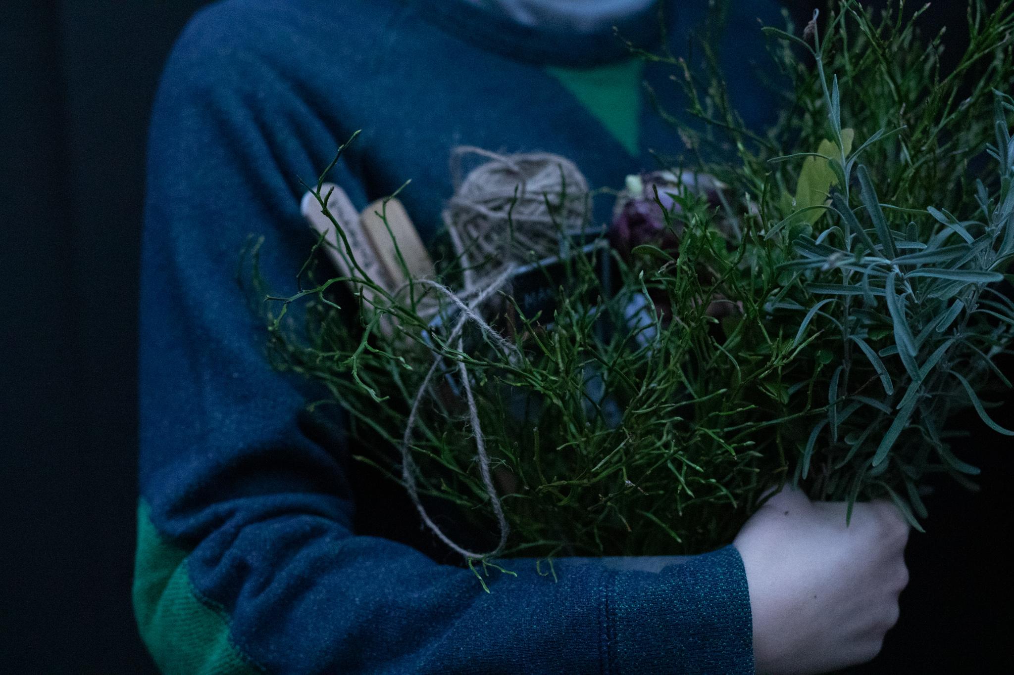 Plantering inför jul. Använder gröna växter